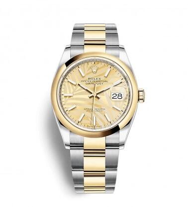 Rolex Datejust 36 Stainless Steel / Yellow Gold / Smooth / Golden Palm / Oyster Replica Watch 126203-0038