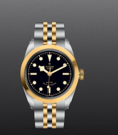 Replica Watch New TUDOR Black Bay 32 S&G Swiss Dive Watch M79583-0001 Yellow gold bezel Steel and yellow gold bracelet
