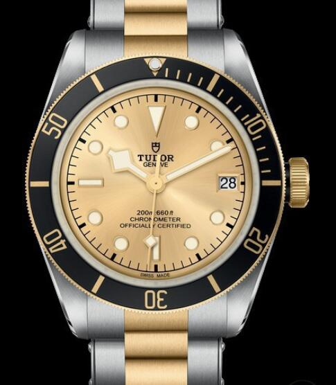 Replica Tudor Watch BLACK BAY S&G M79733N-0004 Steel - Champagne Dial - Yellow Gold Bracelet